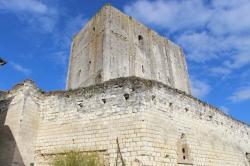 Donjon de Foulques Nerra - Cité royale de Loches